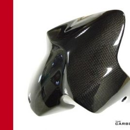 DUCATI MONSTER 821 1200 1200S CARBON FIBRE FRONT MUDGUARD FENDER FIBRE IN PLAIN